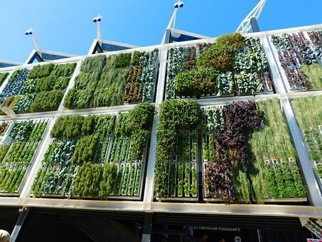 jardines verticales en condominios