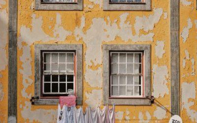 Artículo 32: Derechos y usos de las unidades en el condominio