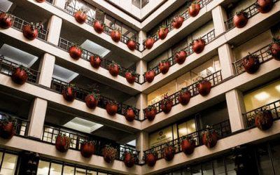 Artículo 46: Condominios de viviendas sociales de más de un bloque independiente